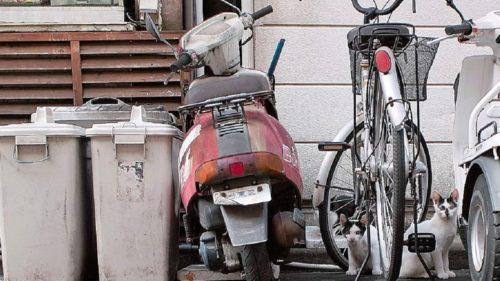 バイクを処分したい時の方法は?必要な手続きや注意点も解説