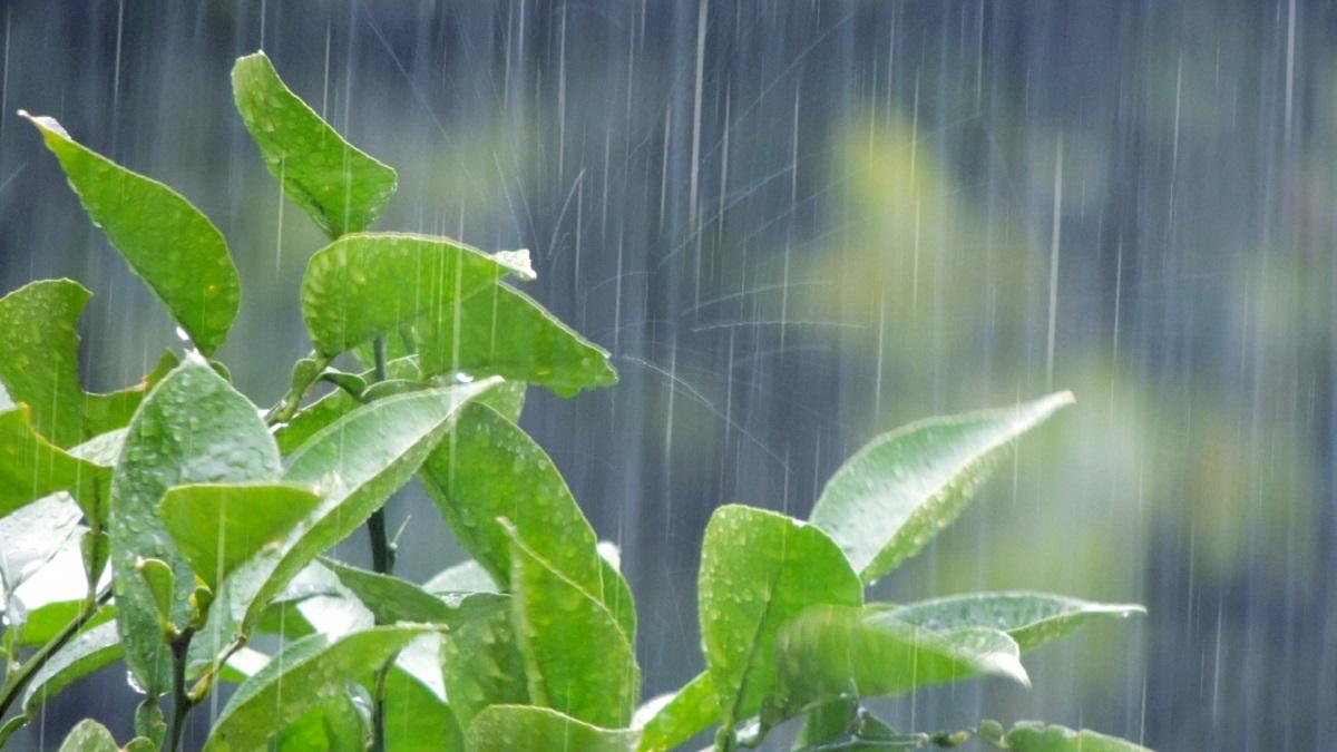 雨の日のツーリング